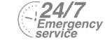 24/7 Emergency Service Pest Control in Garston, Leavesden, WD25. Call Now! 020 8166 9746